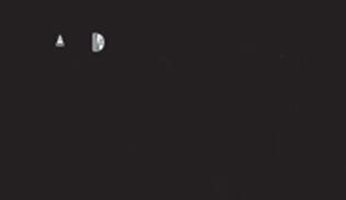 MadeinNYC-logo